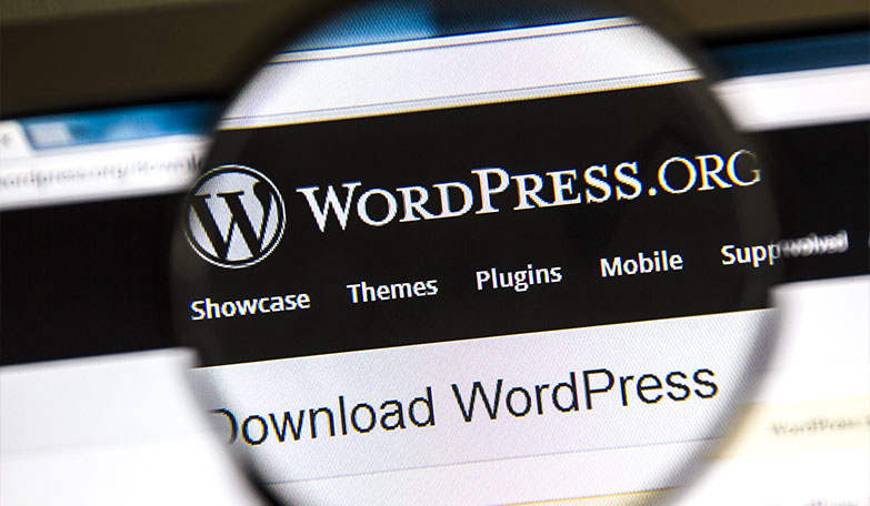 Why You Should Be Using Services Like WordPress and Magneto