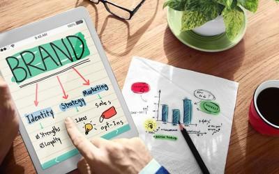Choosing Web Design Help – Professional Company or Freelancer?