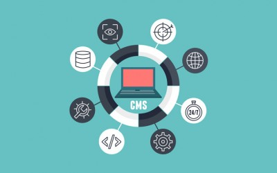 Why CMS is the best to create our website?